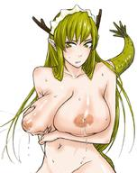 areolae blush breasts dragon_girl futaba_channel green_eyes green_hair horns huge_breasts inverted_nipples kouryuu lactation long_hair maid monster_girl nijiura_maids nipples nude sweat tail u-suke // 780x988 // 127.4KB
